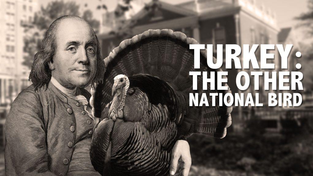 Burung Turkey di berbagai negara