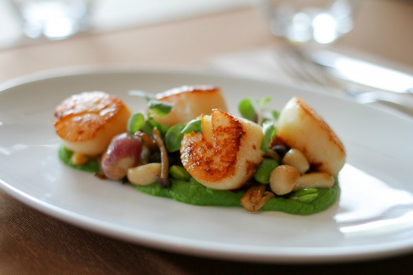Pan Roasted Alaskan Scallop