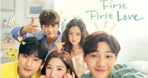 Serial First First Love