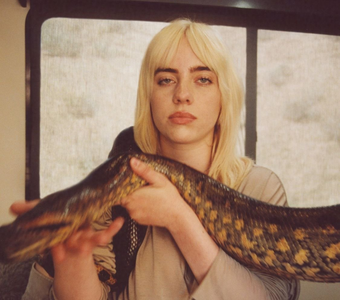 Billie Eilish Rilis Your Power